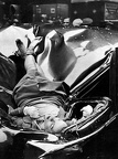 Evelyn McHale 1947